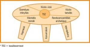 a három fejlesztendő kompetencia és az öt alapelv ennek szolgálatában